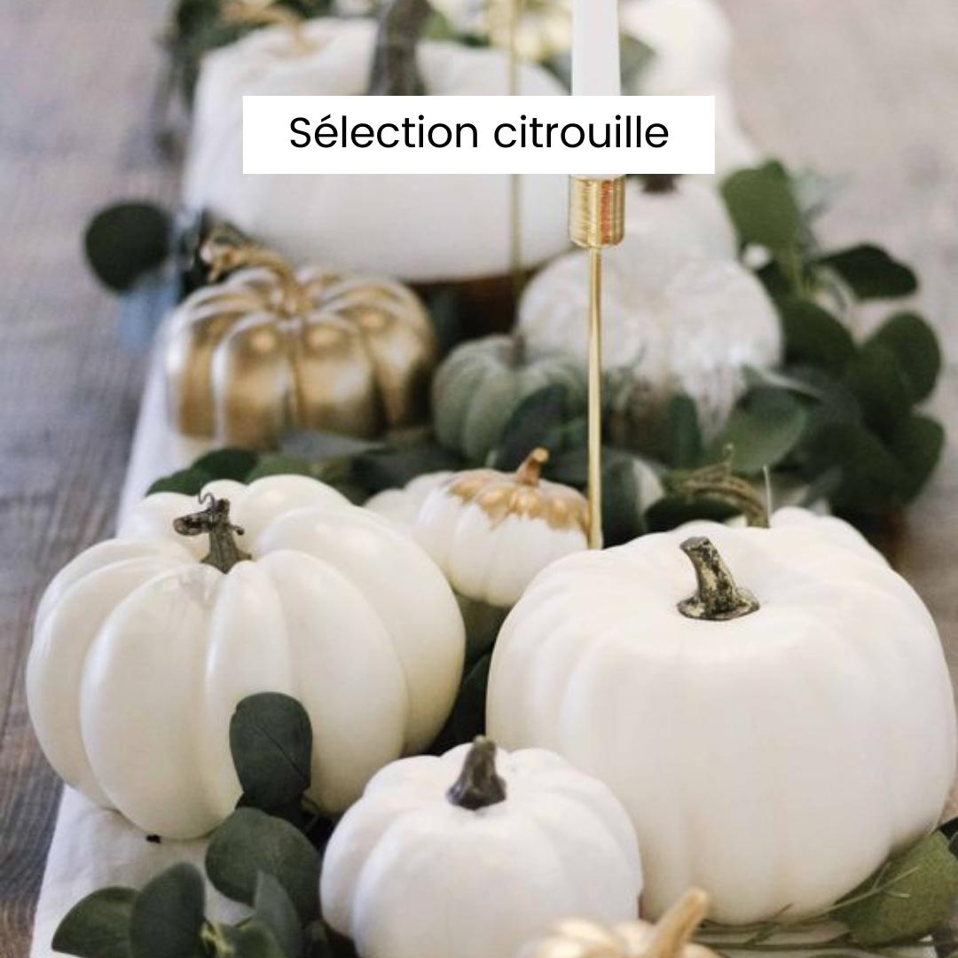 Sélection unique de décoration de citrouilles pour Halloween